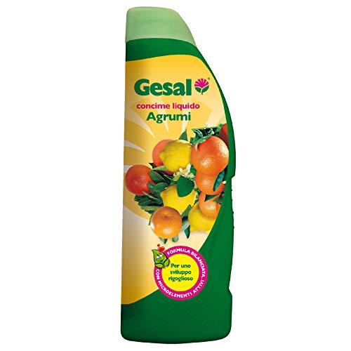 GESAL Concime Liquido per Agrumi, Per uno Sviluppo Rigoglioso, 1 l