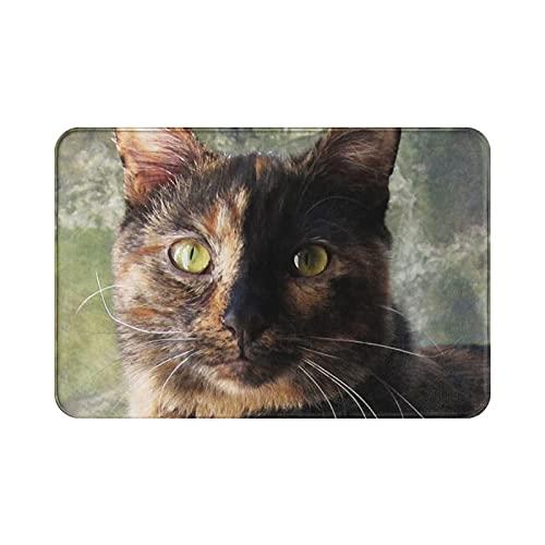 Alfombra antideslizante para puerta de dormitorio, comedor, cocina, diseño de gato con mirada a la cámara, 60 x 40 cm