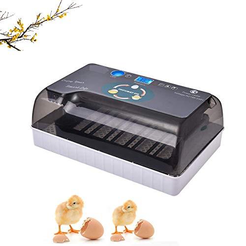 WishY Incubadora De Huevos, Incubadora De Huevos Incubadora Automática Digital, para 4-35 Huevos, Huevos De Pato, Huevos De Fuego