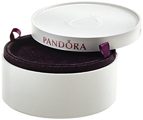 Pandora Unisex Aufbewahrungsbox für 18 Ringe P4042