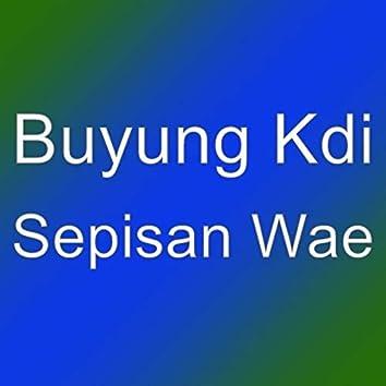 Sepisan Wae