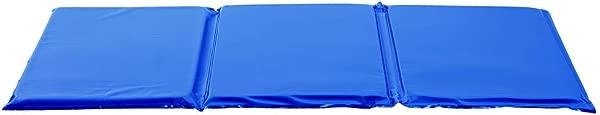 1 无菌 2 色调蓝色休息垫项目 GRMFRBL1