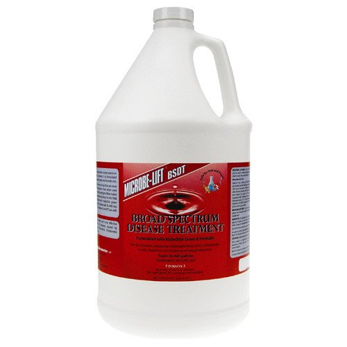 Eco Labs BSDTGAL Broad Spectrum Disease Treatment Gallon