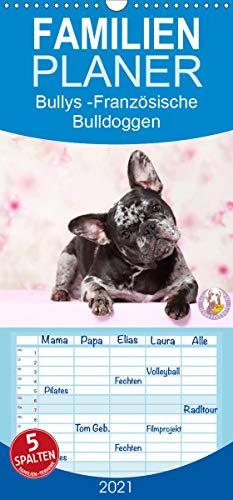 Bullys - Französische Bulldoggen 2021 - Familienplaner hoch (Wandkalender 2021, 21 cm x 45 cm, hoch)