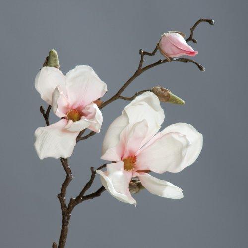 Magnolienzweig Zweig Magnolie Kunstblume creme pink 50 cm