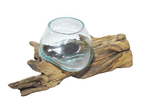 SAWA Spezial Deko-Vase Glasvase Blumenvase XS H 17 cm Ø 15cm auf Treibholz/Wurzelholz Vase mit Holz