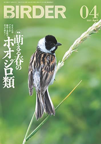 BIRDER (バーダー) 2021年 04月号 [雑誌]