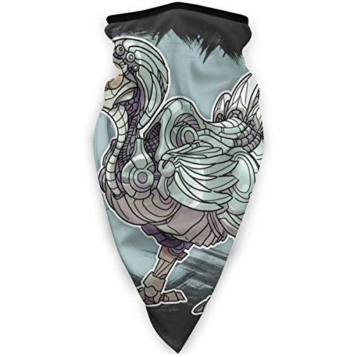 Nother Dodo - Máscara antiviento para pájaros, bandana, máscara facial, polaina, pasamontañas, color negro