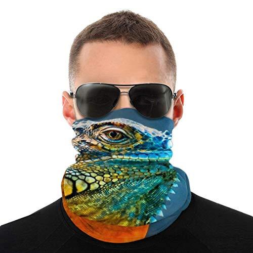 Quintion Robeson Outdoor Magic Stirnband, Bunte Iguana elastische Nahtlose Bandana Schal UV-Widerstand Sport Kopfbedeckung Gesichtsschutz für Mann und Frau