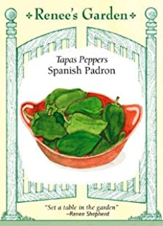 Pepper - Spanish Padron Seeds