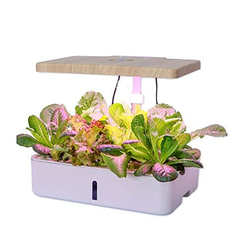 Sistema de cultivo hidropónico Litty