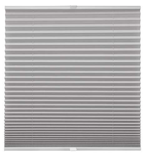 Plissee auf Maß für alle Fenster Montage Glasleiste Blickdicht mit Spannschuh Sonnenschutzrollo Silber Breite: 61-70 cm, Höhe: 101-150 cm
