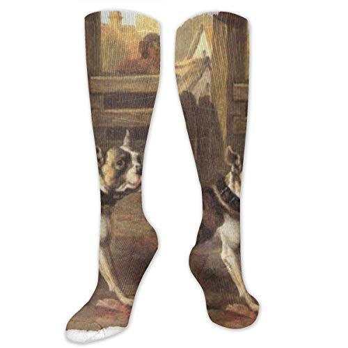 zhouyongz Herren-Socken mit Hundefutter, bunt, bunt, mit buntem Muster, aus Baumwolle