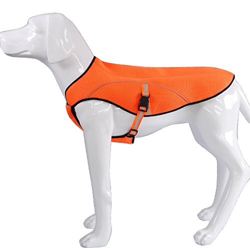 KINGSWELL Dog Anixety Vest