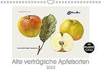 Alte vertraegliche Apfelsorten (Wandkalender 2022 DIN A4 quer): Alte Apfelsorten, die auch von Allergikern oft gut vertragen werden. (Geburtstagskalender, 14 Seiten )