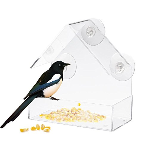 Eruditter–Comedero de pájaros (Transparente, comedero para pájaros Tipo adsorción con 3ventosas Gruesos, Acrylic adsorption Type House Shape Bird Feeder