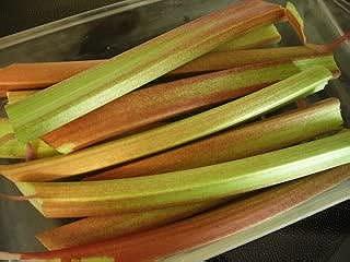 25 GLASKINS PERPETUAL RHUBARB (Pieplant) Rheum Rhabarbarum Fruit Vegetable Seeds