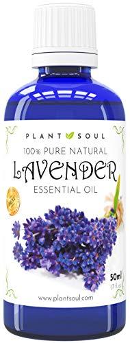Ätherisches Lavendelöl 50ml 100% rein & natürlich | 1000 Tropfen | Wunderschönes Aroma | Hilft bei Reduzierung von Narben | Fördert Entspanntheit | Verbessert den Schlaf | Beschleunigt die Heilung