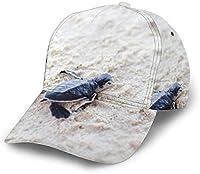 女性男性クラシック通気性野球帽クイックドライ調節可能なお父さん帽子-赤ちゃんウミガメ-ワンサイズ
