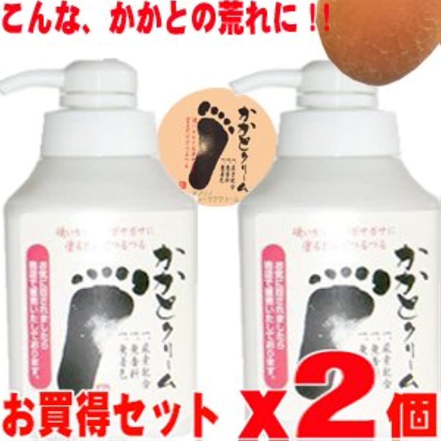 伝統占めるパイプライン【業務用】  アノソノ かかとクリーム 500g x 2本