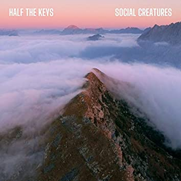 Half the Keys
