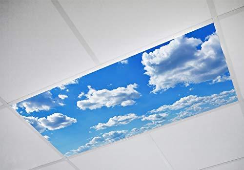 Acrylic Ceiling Panels - 6