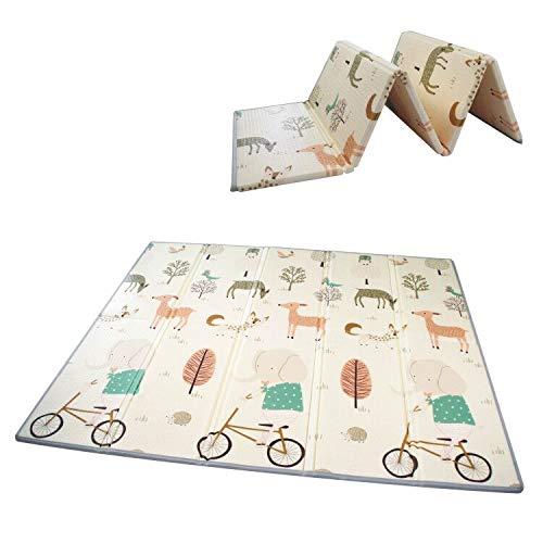 Image du tapis Gupamiga