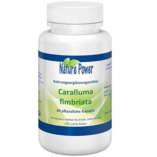 Caralluma Fimbriata   Fördert die Fettverbrennung   von NATURE POWER   60 pflanzliche Kapseln   500 mg pro Kapsel