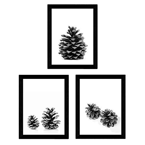 Nacnic Set de 3 láminas de piñas de arbol Pino en tamaño A3, en Blanco y Negro Poster Papel 250 gr y tintas Marco