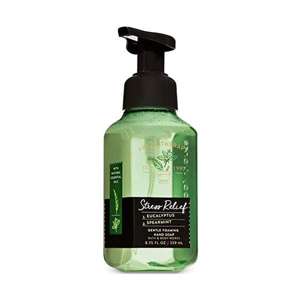 eucalyptus mint soap bath and body works