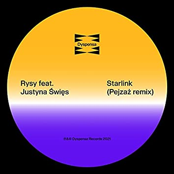 Starlink (Pejzaż Remix)