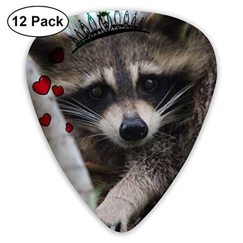 Baby Raccoon Cute Wildlife Animal Wallpaper Guitar Picks Plectrums Guitarras acústicas Ukulele Picks, paquete de 12