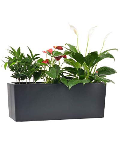 GardenBasix Self Watering Planter Pots with 10 Quarts Coco Soil 7.5 x 20 inch Indoor Outdoor Home Garden Herb Flower Pot for Hanging Railing Balcony Tabletop (1, Black(7.5''x 20''))