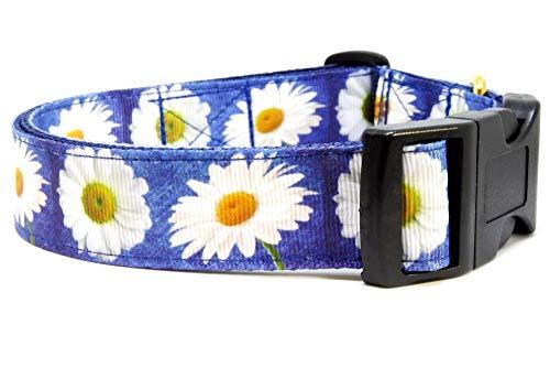 BGDesign Halsband Blumen Gänseblümchen Hundehalsband Nylon verstellbar Klickverschluss weiß blau 38-53 cm x 2,5 cm