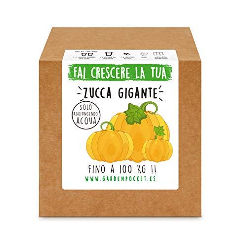 Garden Pocket - Fai crescere la tua ZUCCA GIGANTE - Kit di germinazione