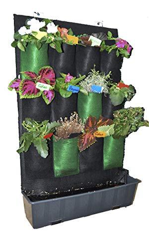 GREEN AT HOME: Jardín Vertical-Huerto Urbano con Riego por Goteo Color Negro, Musgo Spagnum y Jardinera. Cultiva Flores y Plantas Aromáticas. Casas Verdes.