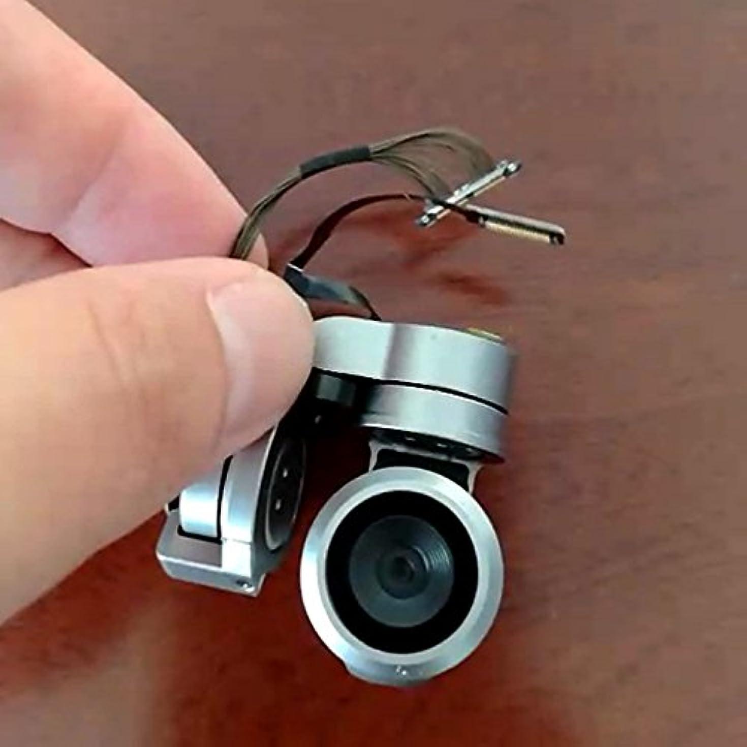 免除するカバー進行中Liebeye フラットケーブル修理部品 フラットケーブル修理部品付きオリジナルジンバルカメラアーム ? ロイヤルPTZカメラキット成分