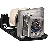 Wikinger BL-FP230D / SP.8EG01GC01 Ersatzlampe für OPTOMA HD20,HD23,HD230X,HD200X,HD20-LV,GT750-XL,HD2200,TX615,TX612,EX612,EX615,HD22,HD200X-LV,HT1081,PRO800P,TW615-3D,TX615-3D,DH1010,TH1020,E...