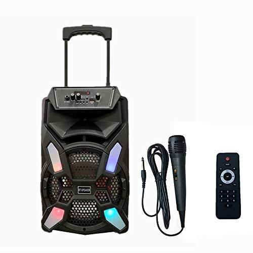 Sistema de Sonido portátil Inalámbrico Ruedas 8' Altavoz Karaoke con micrófono portátil Recargable Reproductor Radio FM MP3 USB Mando (K080)