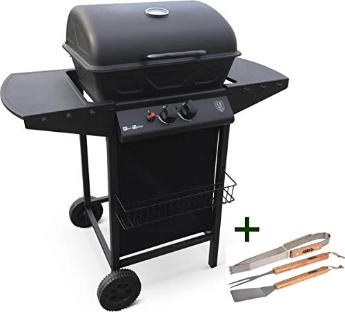 MaxxGarden Barbecue à gaz en acier inoxydable avec 2...