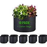 YEYE 1 Gallon Grow Bags 【10 Pack】, Heavy Duty Non-Woven Plant Grow Bags Thickened Aeration Fabric Pots with Durable Handles for Vegetables Peanuts Flowers