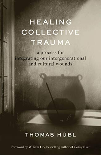 Healing Collective Trauma: A Process for Integrating Our Intergenerational and Cultural Wounds (English Edition)