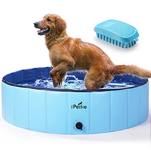 """iPettie Foldable Dog Pool, Collapsible Dog Pool, Dog Swimming Pools for Medium Dogs, Kiddie Pool for Dogs, Cats & Kids, Blue, 48"""" x 12"""""""