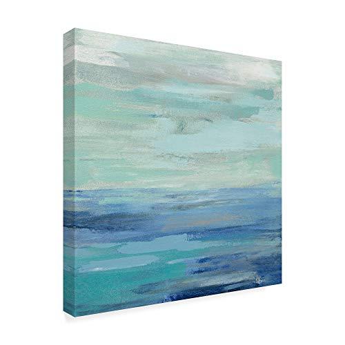 Trademark Fine Art Sunset Beach II no Orange by Silvia Vassileva, 35x35