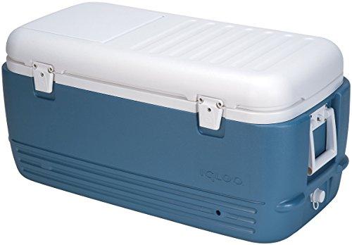 Igloo MaxCold Cooler (100-Quart, Icy Blue)