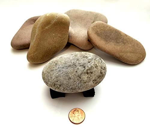 Glacier Rivers, River Rocks for Painting, Art Supplies for Kids, Arts and Crafts for Girls and Boys. 5 To 9 Rocks, Approximately 3 to 5 Inches. 4Lbs Extra Large.