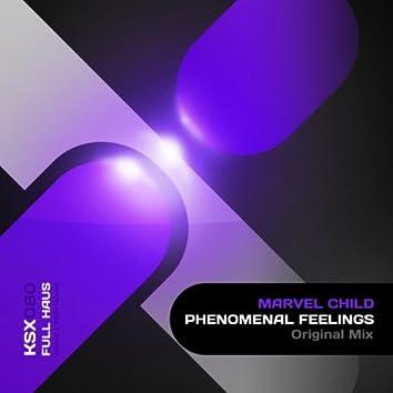 Phenomenal Feelings