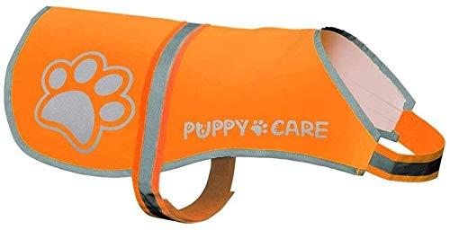 Originals Reflektierende Hundeweste, wasserdicht, hohe Sichtbarkeit, Sicherheitsgeschirr für Aktivitäten im Freien