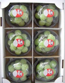 秋旬の桃太郎ぶどう 200g×6カップ 1.2kg以上【皮ごと種なし】岡山県産