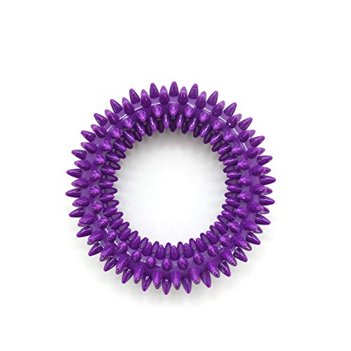 Best Pet Supplies, Inc. Pet Rubber Chew Toy - Dental Ring, Purple, Small (RT09-PP-S)